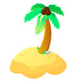palm tree in vector image vector image