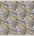 seamless pattern of grapevintage vector image vector image