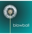 blowball vector image