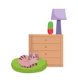 cat sleeping on cushion drawers with cactus and vector image
