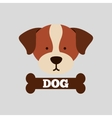 cute pet design vector image