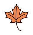 maple leaf foliage autumn nature line fill icon vector image vector image