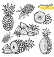 pineapples vector image vector image