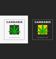 sativa and indica cannabis logo template on white vector image vector image