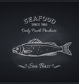 sea bass hand drawn icon vector image vector image