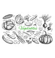 vegetables collection 1 vector image
