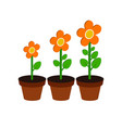 plant growth stages symbol flat isometric icon or vector image