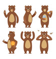 brown bear cartoon wild animal standing at vector image