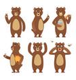 brown bear cartoon wild animal standing