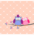 Couple owls in love vector | Price: 1 Credit (USD $1)