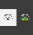 graphic label design with organic green sativa vector image vector image