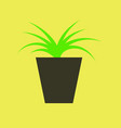 icon in flat design flower in pot aloe vector image vector image