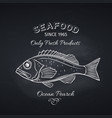 ocean perch hand drawn vector image vector image