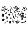 set of hand drawn ink flowers and grass vector image
