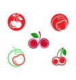cherry icon vector image
