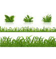 realistic green grass 3d fresh spring plants set vector image