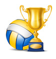 Volleyball cup