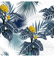 yellow tropical flowers and plants blue background vector image vector image