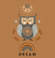 celestial poster with owlmoonrainbow vector image