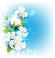 gentle abstract background vector image