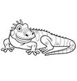 Iguana outline