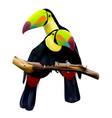keel-billed toucans sitting on branch vector image