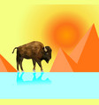 low poly bison on dry grass field with sunset vector image vector image