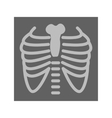 Lungs X ray vector image