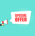 male hand holding megaphone with special offer vector image vector image