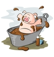 potbelly piggies mud bath vector image vector image