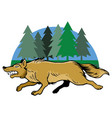 running wolf and pine trees vector image vector image