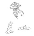 a variety of marine animals outline icons in set vector image vector image
