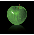 green apple isolated on black background vector image