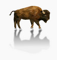 isolated low poly bison and reflection with white vector image