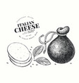 italian cheese hand drawn dairy engraved style vector image
