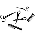 tools hairdresser vector image