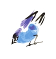 watercolor drawing bird robin at white background vector image vector image