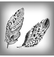 Hand drawn stylized feathers collection vector image