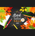 back to school sale bannerautumn leaves pencils vector image