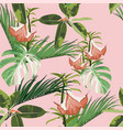 exotic monstera ficus and palms leaves vector image vector image