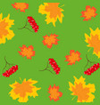 pattern from berry and foliages vector image vector image
