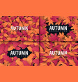 set of autumn banners with leaves background for vector image vector image