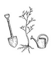sketch tree planting vector image