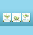 summer plant and house plants advertise template vector image vector image