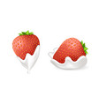 tasty strawberries in fresh whipped cream set vector image vector image