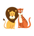 african lion with tiger vector image vector image
