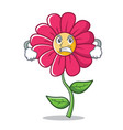 angry pink flower character cartoon vector image vector image
