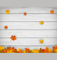 autumn background with falling leaves red yellow vector image vector image