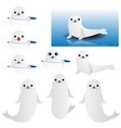 collection of cute baby seal vector image vector image