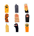 different cat paws set collection various cute vector image vector image